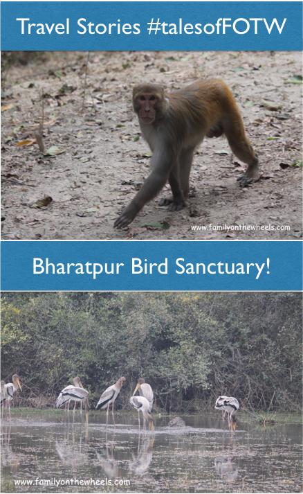 Travel Bharatpur, Rajasthan